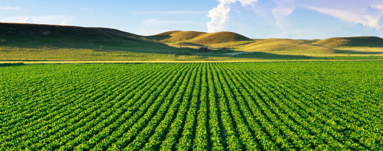 banner_agriculture